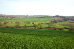 Beautiful East Sussex (Adam Swaine) Tags: eastsussex sussex countryside fields aonb englishlandscapes english england arable britain beautiful seasons canon