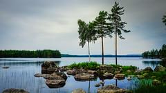 Tag 17 (1) (uwesacher) Tags: baum felsen himmel landschaft gras meer wasser wald see rastplatz
