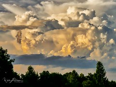 Clouds (Catch the Moment Photography) Tags: landscapephotography landscapes clouds sky trees contrast underexposed dusk wadehooperphotography wispy tennessee thunderhead