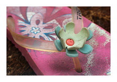HPIM3318 (Jordane Prestrot) Tags: jordaneprestrot tong flipflop chancla fleur flower flor