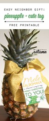 Basket Gifts : Love this idea! Give a pineapple as a neighbor gift for Christmas. Super easy gi… (giftsmaps.com) Tags: gifts