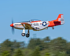 Greg Anders piloting the Heritage Flight Museum 1945 North American P-51D Mustang 'VAL-HALLA' N151AF at the 2018 Community Aviation Day - Port of Skagit Regional Airport KBVS (Hawg Wild Photography) Tags: heritage flight museum 1945 north american p51d mustang valhalla n151af greg anders terrygreen hawg wild photography wwll warbird fighter skagitregionalairport kbvs 2018 community aviation day port skagit regional airport