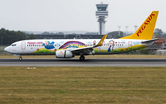 PGT_B73H_TCCPN_Adae_special-cls_BRU_JUL2018 (Yannick VP) Tags: civil commercial passenger pax transport aeroplane jet jetliner airliner pgt pegasus airlines boeing b737 nextgen ng b737ng 737800 wgl winglets tccpn special livery colors colours paint childrensdrawing adae bru ebbr brussels airport belgium be europe eu july 2018 arrival landing touchdown runway rwy 25l aviation photography planespotting airplanespotting