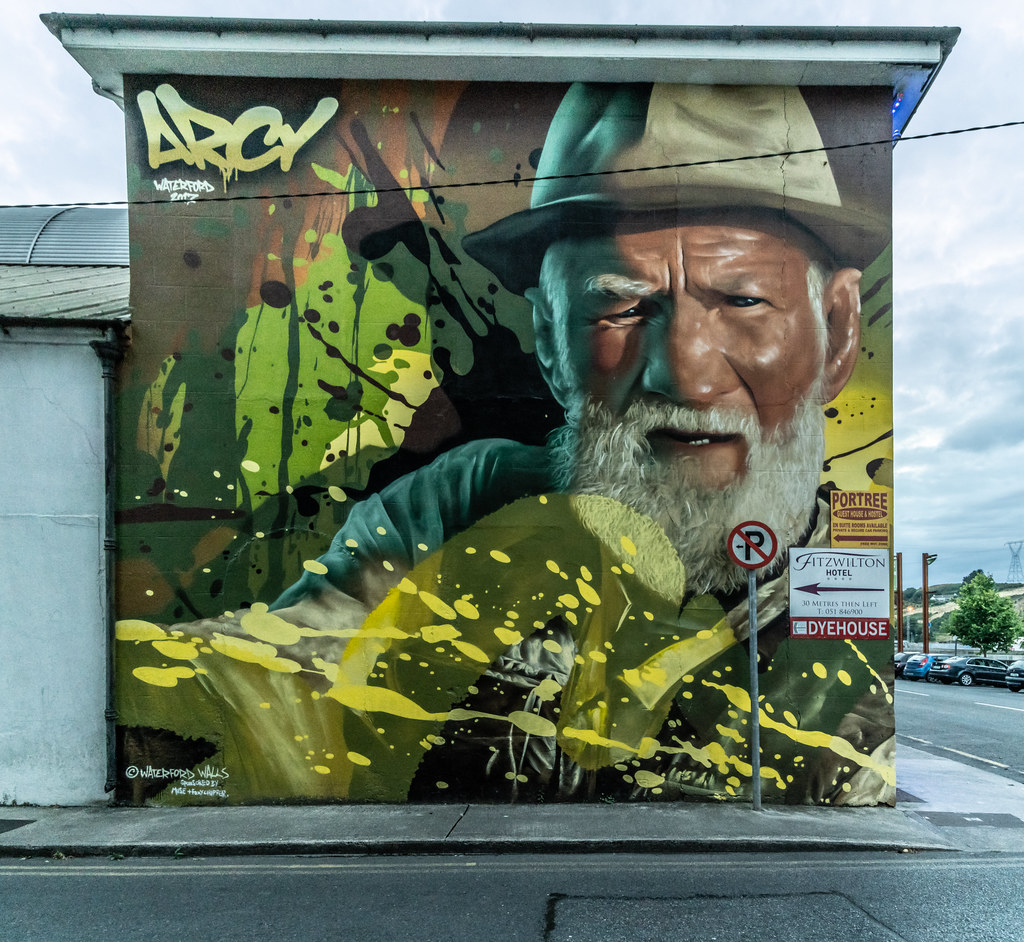 EXAMPLES OF STREET ART [URBAN CULTURE IN WATERFORD CITY]-142314
