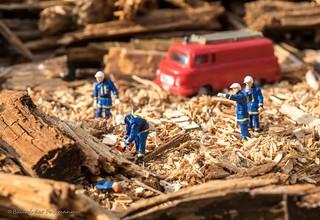 Einsatz im Holz