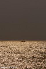 Sunrise (asheshr) Tags: 18140mm arribada gokurkuda beach d7200 incredibleindia india massnesting nikkond7200 nikkor odisha orisssa sea shimmering shimmeringsunrise goldensunrise fishingboat sky water ocean