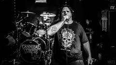 Cannibal Corpse - live in Bielsko-Biała 2018 fot. MNTS Łukasz Miętka_-7