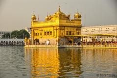 DSC_0962 (Ben Perek Photography) Tags: india punjab amritsar asia hindu sikh golden temple incredible beauty sunset sunrise sun gold piligrimage