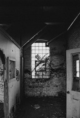 July 25, 2018 (robbiemaynardcreates) Tags: abandoned holyoke massachusetts albion paper mill urbex fall halloween new england minolta 7000 maxxum ilford xp2 adobe lightroom robbie maynard obsolete cameras creates beautiful photography black white dead lost homless america usa river lake damn school hospital ghost asylum train angel chain