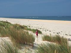 P7260107 copie (C&C52) Tags: paysage landscape nature plage dunes sable littoral océan femme personne
