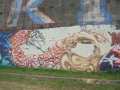 312 (en-ri) Tags: calligrafia nero rosso arancione torino wall muro graffiti writing parco dora