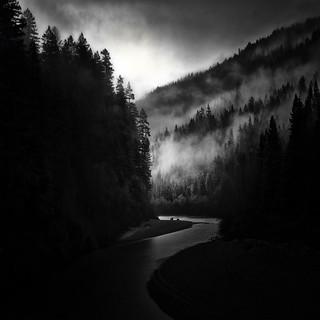 Humboldt Redwoods / Eel River
