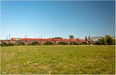 Vectron_Lokzug (Berliner_77) Tags: vectron baureihe 193 300 werbelok deutsche bahn db cargo siemens trainspotting eisenbahn eisenbahnbrücke hochheim