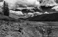 Clinton Gulch Dam Reservoir Outside Leadville, CO (HarrySchue) Tags: colorado landscape mountains monchrome lakes clouds trees rockymountains stumps sky nikon blackwhite sigmalens bwfilters reallyrightstuff leadville