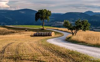 Strada di campagna - San Severino Marche