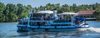 2018 - Romania - Danube Delta - MIRCESTI TULCEA