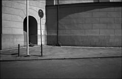 vertikales gedränge (fluffisch) Tags: fluffisch darmstadt leica leicam6 summiluxm35f14 preasph summilux 35mm f14 rangefinder messsucher analog film cms20 adox