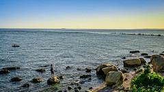 Fishing at Sunset (Alan Charles) Tags: ct connecticutshore hammonassetbeachstatepark hammonassetstateparkmeigspoint meigspoint seascape beach fishing lateafternoon ocean rockyshoreshore sea shore