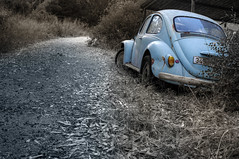 (FX-1988) Tags: european car small dark selective color pentax k7 vw volkswagen beetle country side back rear window scrap rust road dirt yard junk blue azure light retro vintage sad black white israel trees bushes