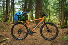 Camping Mode (Rob Pitt) Tags: delamere forest cheshire a7rii clouds tree grass wood yongnuo 50mm metabones orangeg22012 orangebikescouk rack camping seatpost mounted carbon forks