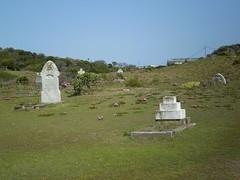 The Coastal Hospital Cemetery Walk (300m) (trailhikingaust) Tags: hikes newsouthwales trails walks
