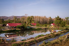 Contryside, Laos (pas le matin) Tags: grass river rivière sky ciel lake lac water reflection tree wood travek voyage world houses maisons canon 7d canon7d canoneos7d eos7d laos asia lao asie southeastasia bolaven bolavenplateau