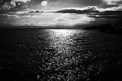Blackwater ahead (stefankamert) Tags: stefankamert blackwater noir noiretblanc water clouds landscape lakeconstance bodensee friedrichshafen blackandwhite blackwhite ricoh gr grii ricohgr light grain lake