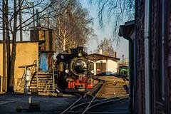 99 713 by Mikołaj Radzikowski - Radebeul Ost, Lößnitzgrundbahn