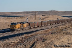 UP 7193 | GE AC4400CW | BNSF Orin Subdivision (M.J. Scanlon) Tags: ac4400cw ac44cw ac44cwcte antelopemine bnsforinsub bnsforinsubdivision business crrat canon capture cargo coal coalcountry commerce conversecounty digital eos engine freight ge haul horsepower landscape locomotive logistics mjscanlon mjscanlonphotography merchandise mojo move mover moving oklahoma outdoor outdoors photo photograph photographer photography picture powderriverbasin powderrivercoal rail railfan railfanning railroad railway redrock scanlon sky steelwheels super track train trains transport transportation tree up up6049 up7193 upcrrat upcrrat24 unionpacific wow wyoming ©mjscanlon ©mjscanlonphotography