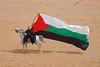 Flag (gooneybird29) Tags: desert wüste wadirum sand jordan jordanien flag fahne