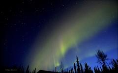 Iridium Satellite Flare (Katy on the Tundra) Tags: northernlights auroraborealis aurora nightsky iridiumsatellite satellite