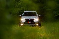 (RichardGlenSailors) Tags: 2014 subaru forester xt turbo offroad nature lights trees rain dusk north georgia