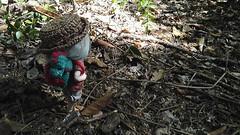 Adventure time! (Leegloo) Tags: rement re ment dino dinosaur dinosaure pukifee pkf fairyland tiny mio ball jointed doll dolls bjd lee leegloo