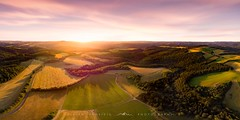● fields of gold ● eifel ● germany ● (Oliver Jerneizig) Tags: oliverjerneizigde wwwoliverjerneizigde oliverjerneizig germany deutschland duitsland allemagne germania sunset longexposure night citylights landscape landschaft canon 6d canon6d2 6dmark2 drohne drone mavic air dji eifel arhweiler fuchshofen schuld wershofen reifferscheid ernte sunrise harvest field feld felder fields golden gold