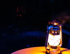 Beast Made of Night (ashhayling) Tags: beast night evil creature lens glare light lantern
