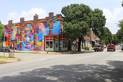 The STL STyLe House Mural (pasa47) Tags: stlouis stl stlouiscity cityofstlouis missouri unitedstates us southside southstlouis southcity cherokeestreet 2018 july summer canon 6d