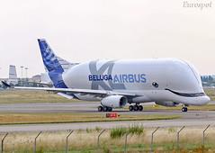 F-WBXL Airbus Beluga XL (@Eurospot) Tags: fwbxl airbus beluga belugaxl toulouse blagnac