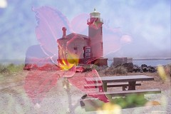 Double exposure:  Lighthouse/Lily - film (JSB PHOTOGRAPHS) Tags: img115 coquilleriverlighthouse nikonsupercoolscan5000ed motordrive nikon fg20 35mmfilm colorfilm expiredfilm film filmcamera md14 filmisnotdead filmphotography ishootfilm nikonfilm agfa iso200 vistaplus flower 60mm macro bandon oregon lighthouse 24mm doubleexposure lily nikonn80 n80