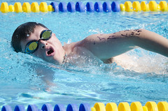 SONC SummerGames18 Tony Contini Photography_1279 (Special Olympics Northern California) Tags: 2018 summergames swimming swimmer athlete maleathlete water specialolympics
