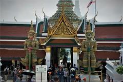THL0791 (deandenby86) Tags: thailand phuket au nang ladyboys elephant lizard krabi karon bangkok