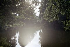 [analog] Delmenhorster Graft im Sonnenlicht (Schwubb) Tags: nikon f6 graft delmenhorst sonnenlicht natur park film analog niedersachsen reflectarps10m fujifilm fujicolorc200 35mm