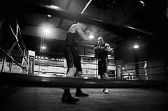 35276 - Face Off (Diego Rosato) Tags: boxe pugilato boxelatina boxing ring match incontro nikon d700 2470mm tamron bianconero blackwhite face off