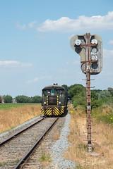 9105 aan de maïs te Sint-Amands  2018-07-08 (Next generation photo) Tags: evenementen hlr hlr9105 nikond750 sdp scheldelandinstoom2018 spoorwegen transport