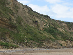 Madness (JonCombe) Tags: norfolk coastwalk208 sheringham cromer salthouse coast path england norfolkcoastpath englandcoastpath