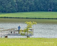Just Fishin' (augphoto) Tags: augphotoimagery fisherman fishing nature outdoors people recreation solitude water ninetysix southcarolina unitedstates