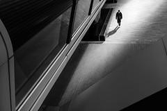 London (Mark Fearnley Photography) Tags: noir monochrome blackandwhite bnw fineart streetphotography fujixt2 fujixseries fujix fuji london