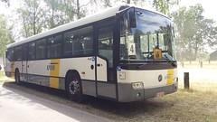 Mercedes-Benz Conecto O345 E3 Intercity - Reizen de Valk De Lijn N.V. Heusden-Zolder, België (Celik Pictures) Tags: belgië belgium belgique belgiën spottingroadvehicles vehiclespotting spottingvehicles sivilvehicles busspotting autocars spottingautocars spottingbusses bussen bus geparkeerdvoertuigen parked mercedesbenz daimler mbenz reizen de valk lijn nv heusdenzolder bussenbinnenland bussenvanbelgië