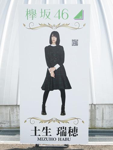 欅坂46 画像17