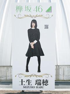 欅坂46 画像94