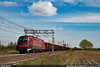 Steeljet (Marco Stellini) Tags: obb rail cargo carrier austria siemens taurus 1216 e190